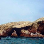 Islas Ballestas, Peru: The Poor Man's Galapagos?