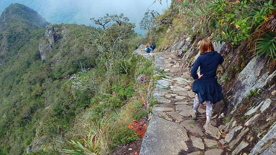 Jungle trek inca path