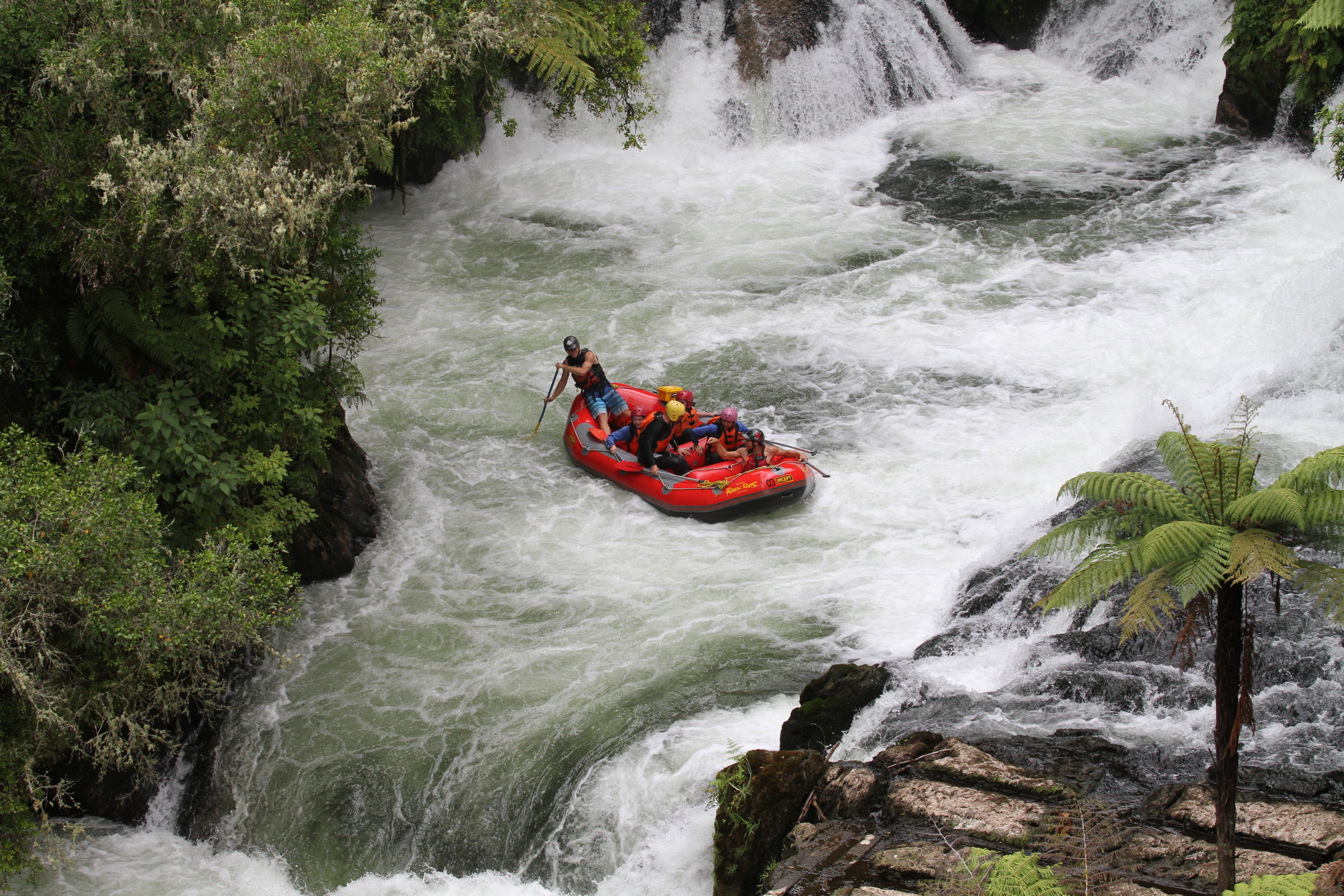 rafting, NZ
