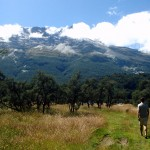A Glenorchy Roadtrip in Pictures