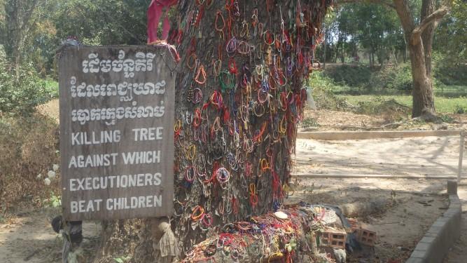 Killing tree, cambpdia